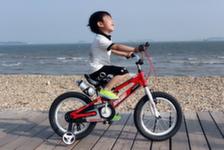 Велосипеды Royal Baby - самые легкие!